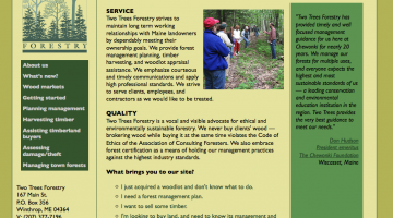 Two Trees Forestry website built in a FAQ style